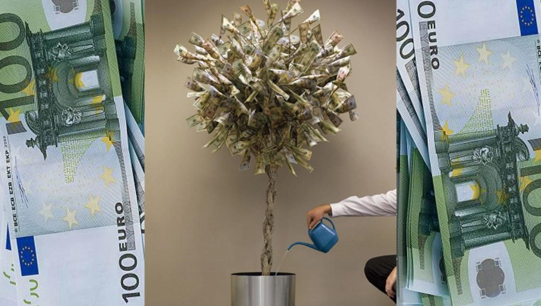 albero alternativo