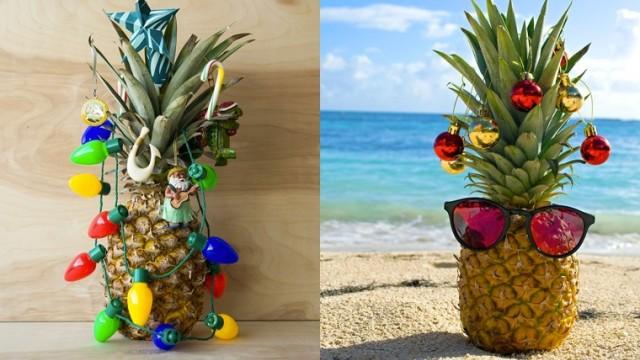 ananas-albero3