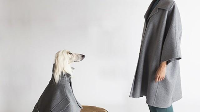 vestiti-cani-temellini